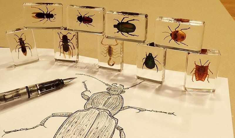 bugs-sep16-header
